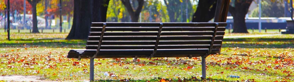 wooden park bench on green grass