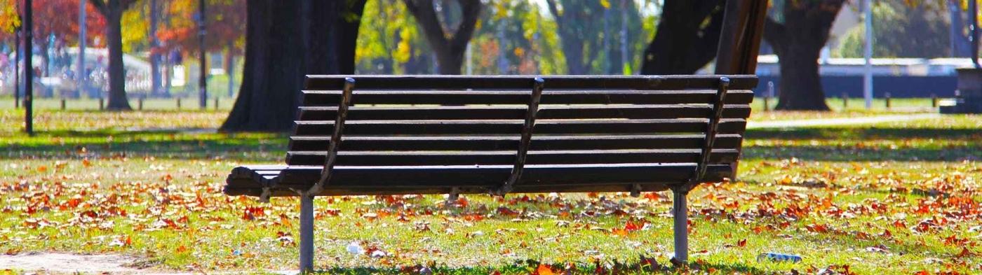 wooden park bench on green grass