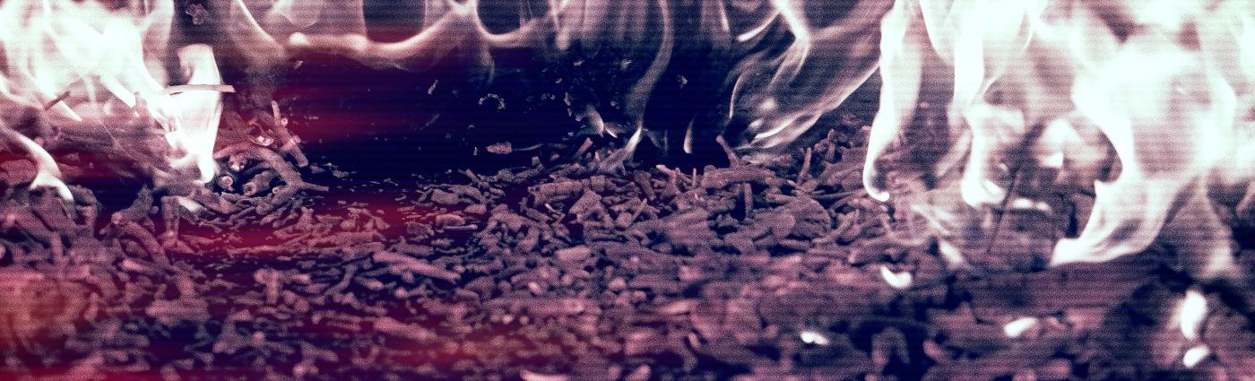 close up fire