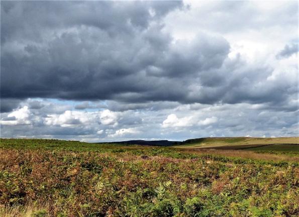 dark clouds above a moor